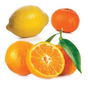 doterra-poweroele.de Citrus Bliss 2
