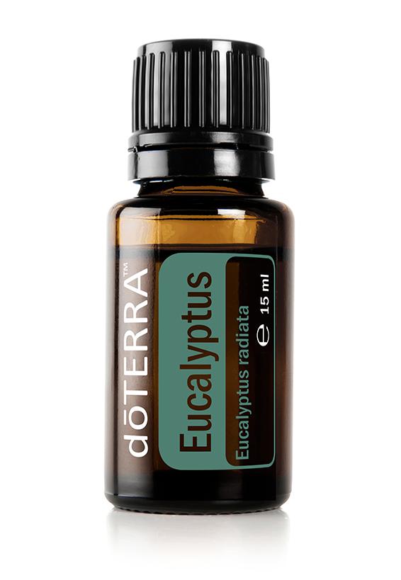 doTERRA Eukalyptus